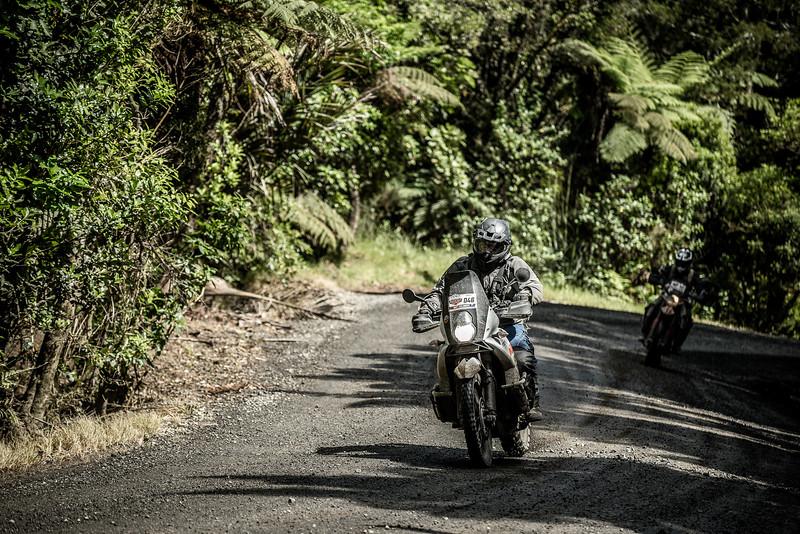 2018 KTM New Zealand Adventure Rallye - Northland (758).jpg