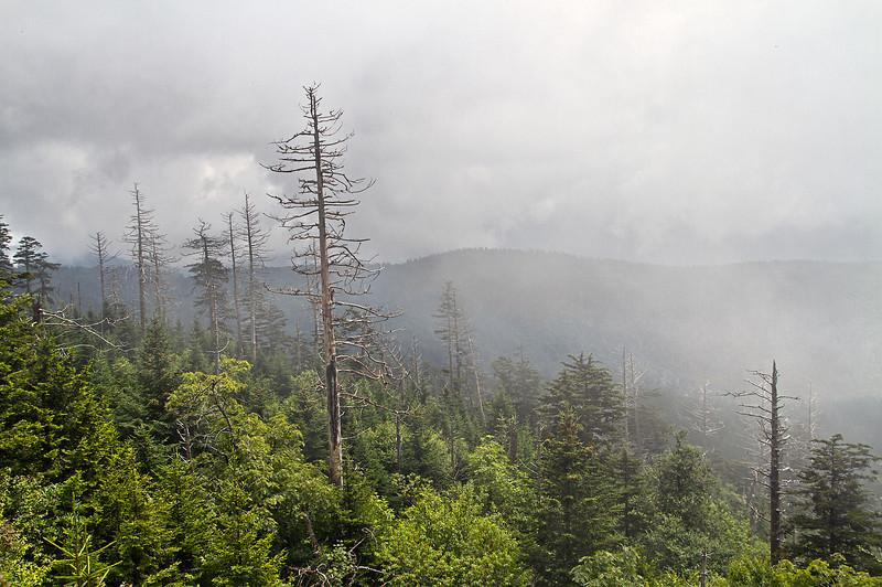 MountainTrip2013-08-10_013.jpg