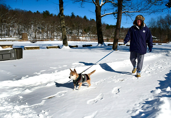 1/31/2019 Mike Orazzi | Staff Kathy Thompson while walking her Chihuahua Rocky,8, in Rockwell Park on Thursday afternoon.