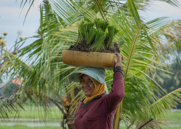 Bali - 2018