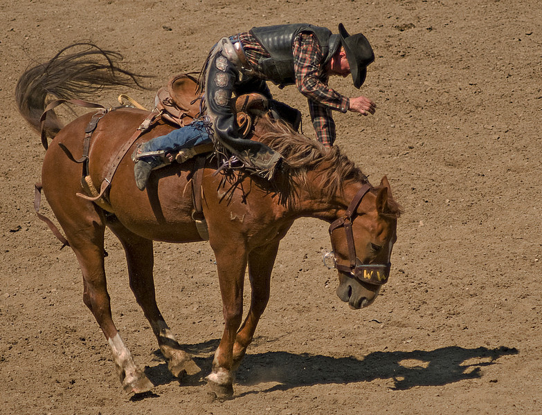 COOMBS RODEO-2009-3684A.jpg