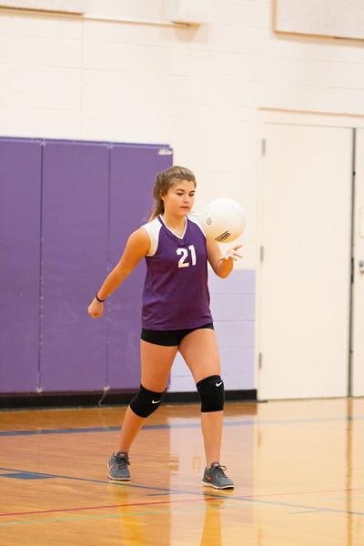 IMG_8880 volleyball oct2018.jpg