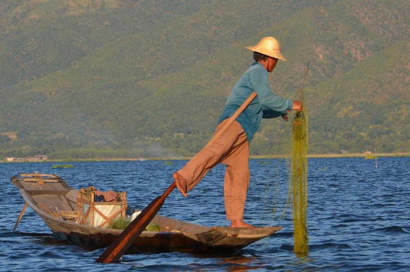 DSC_4480-intha-leg-rowing-fisherman.JPG