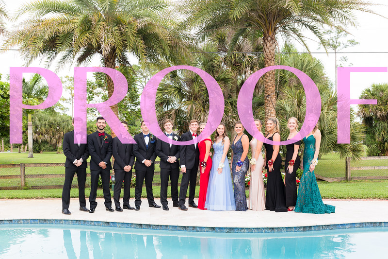 Prom 2019-147.jpg