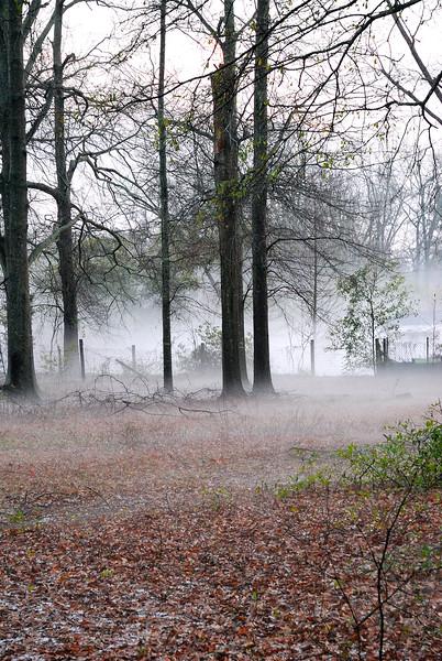 Foggy Hail Storm.jpg