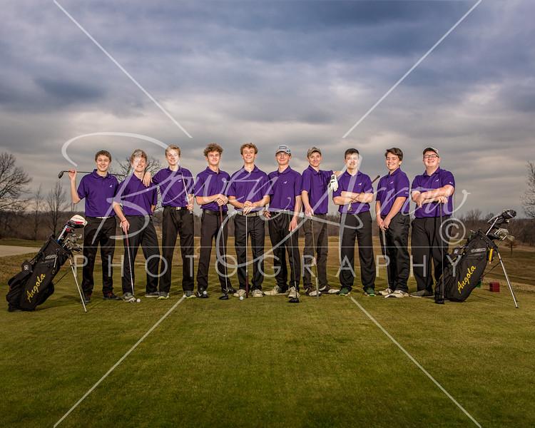 Boys Golf Team 2018