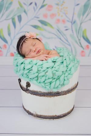Sienna Newborn