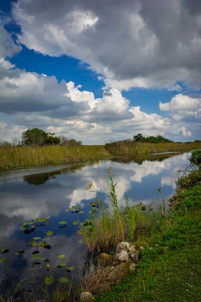 Everglades-6.jpg