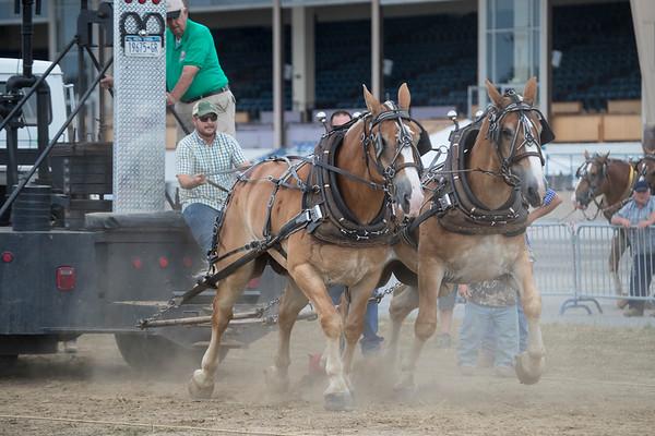 Lightweight  Horse Pull 8/14/17