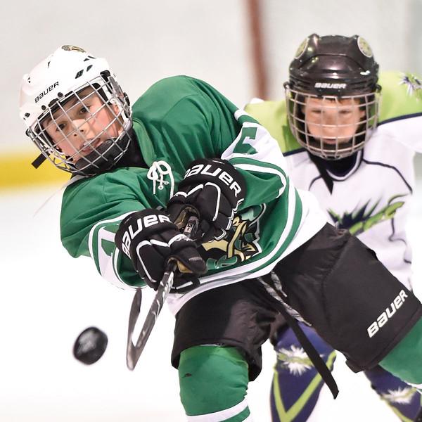 2014 AAA Spring Hockey Classic