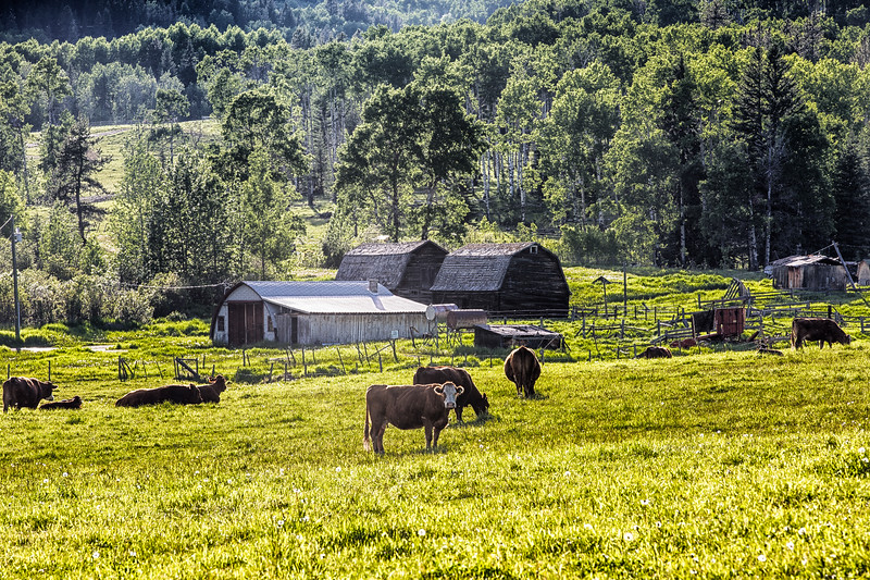 Farm Hwy 762