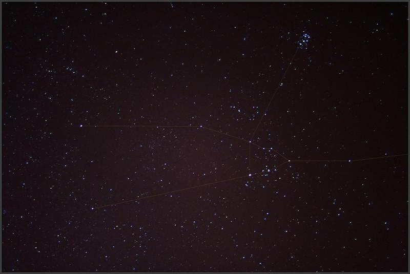 Taurus01_1600-4x20-45-33.jpg
