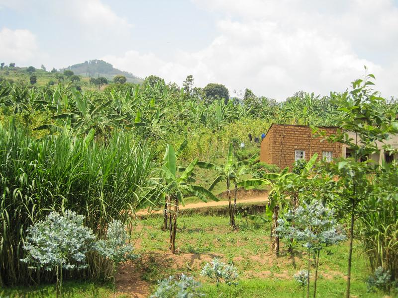Rwanda_17_ixus-9159.jpg