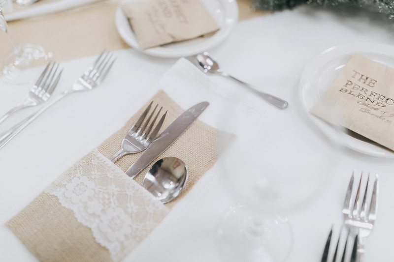 Nicole_Jason_Wedding_Holiday_Inn_Elgin_Illinois_December_30_2018-5.jpg