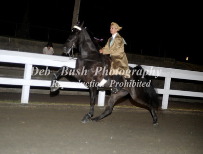 CLASS 36 AMATEUR STAKE - CANTER