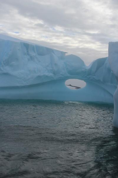 Antarctica 179.JPG
