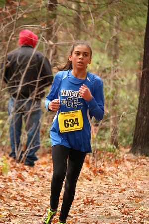 Western Mass. Girls Cross-Country Championships - 111018