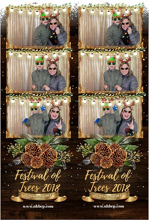 Festival of Trees Corunna 2018