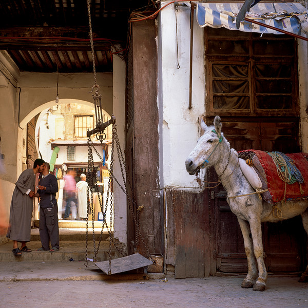 MA Donkey Scales and Embracing Men Fez Souk May 04 H-58.jpg