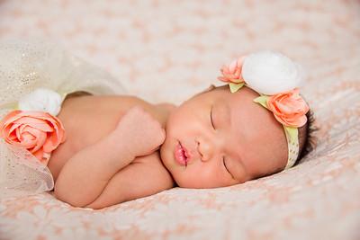Elysse Newborn