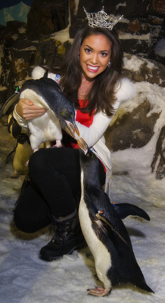 Miss CA 2011 visits SeaWorld