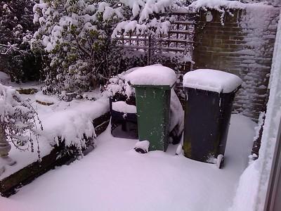 sneeuw pijnacker
