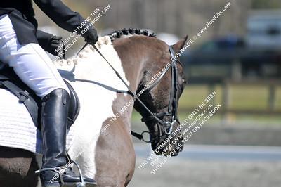 2011-04-03 USEA Horse Trial