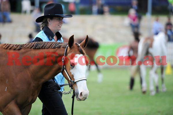 2012 09 29 Perth Royal Show Paint