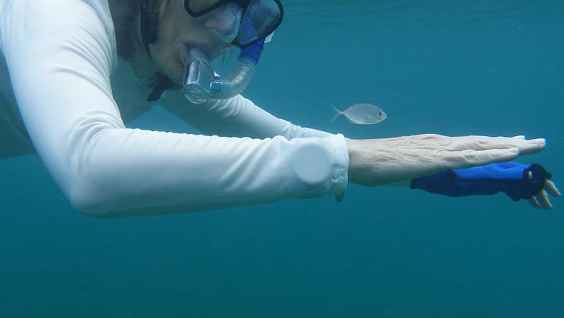 Little fish friend swimming fast!
