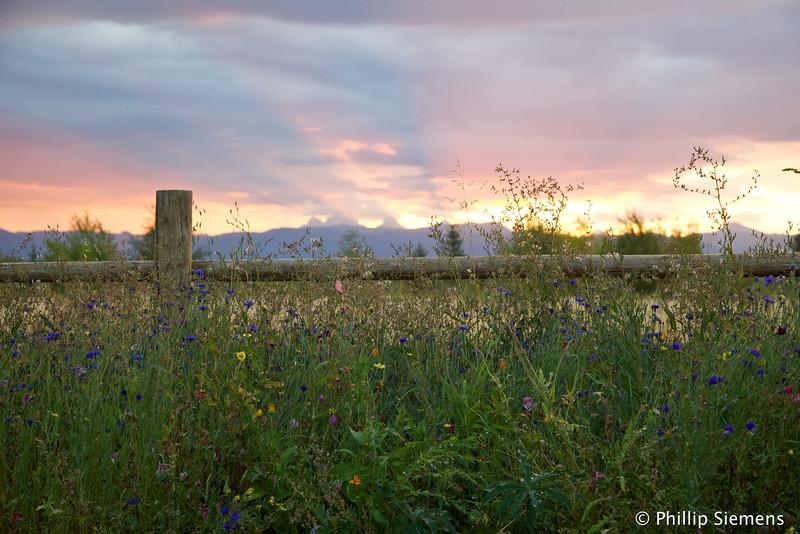 Teton sunrise from Driggs cabin