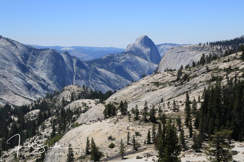 Yosemite 2018 -22.jpg