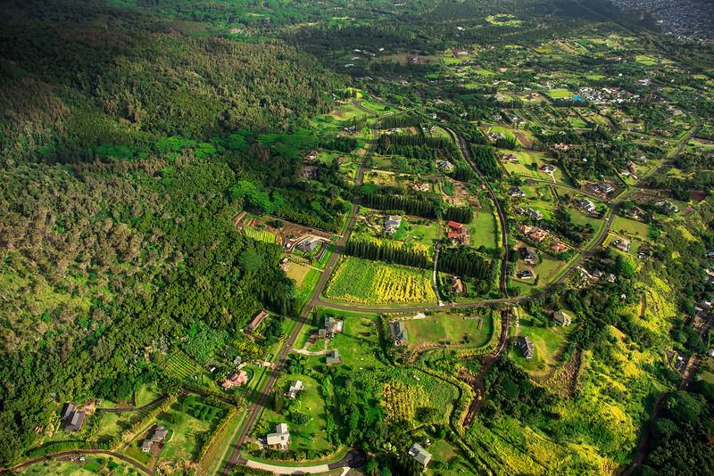 Aerial view of Maui farmlands, Hawaii