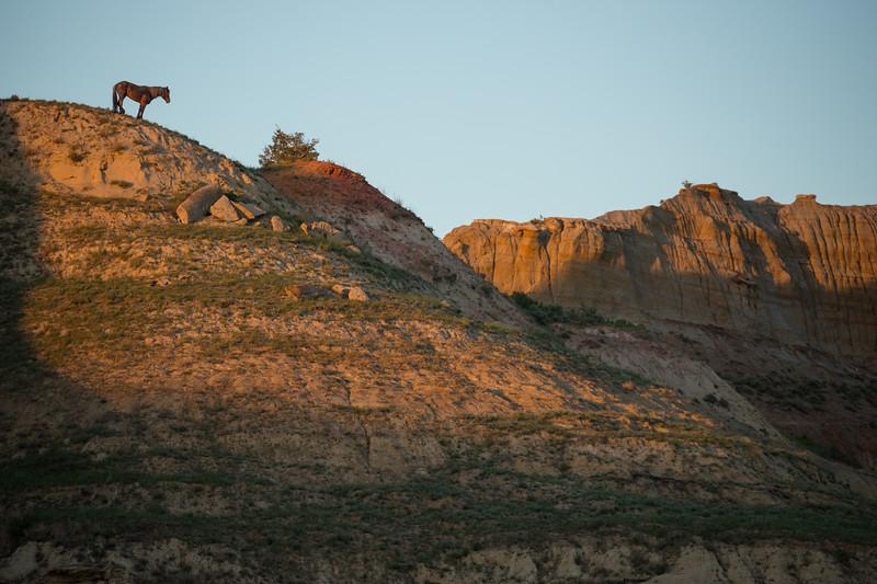 wild horse cliff-3667.jpg