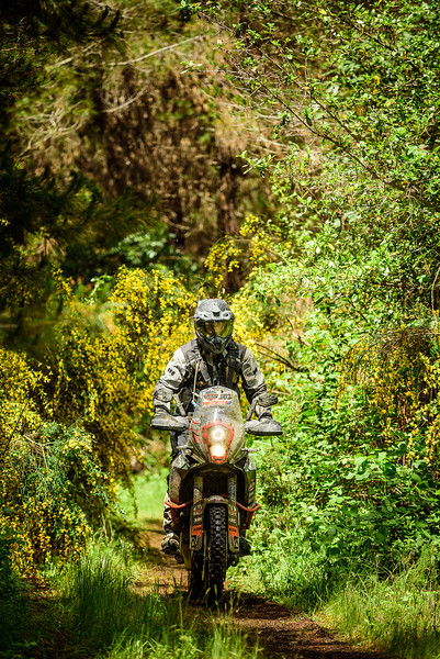 2019 KTM New Zealand Adventure Rallye (410).jpg