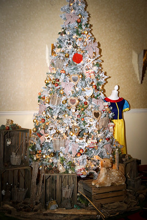 Phoenix Christmas Ball