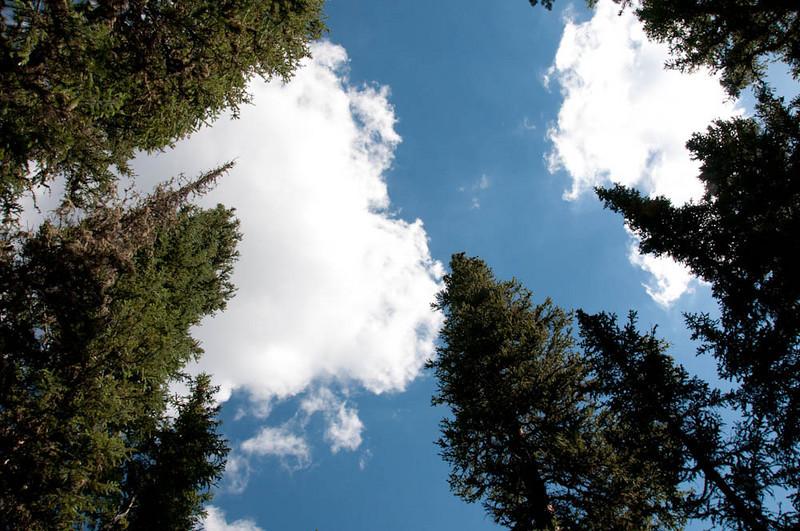 20100718_Colorado_Vacation_2010_0042