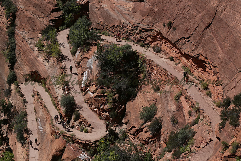 Switchbacks down from refrigerator cyn.jpg