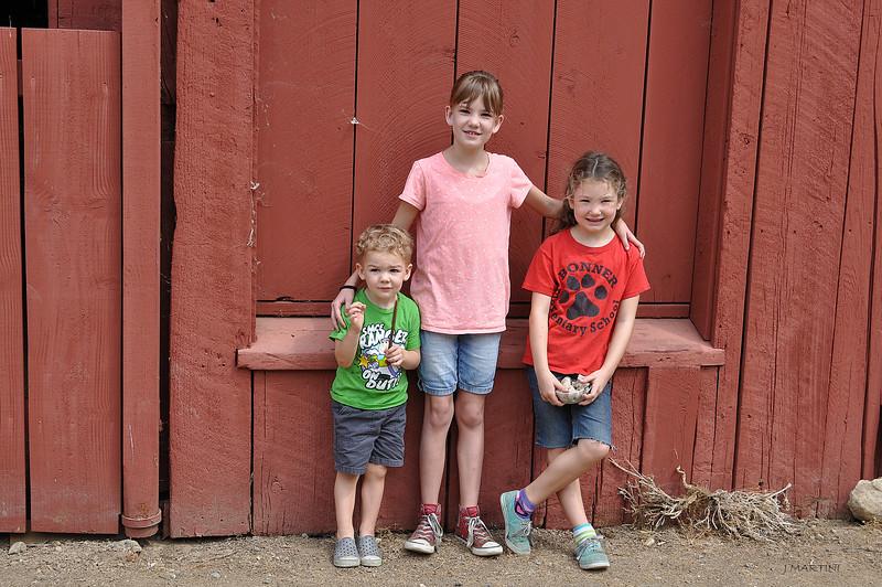 BARNYARD KIDS 8-6-2014.psd