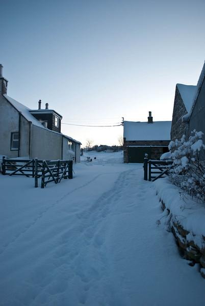 Scroghill Snow (18 of 21).jpg