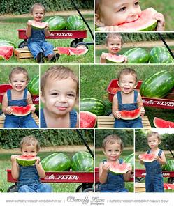 Watermelon Mini's Coming Soon