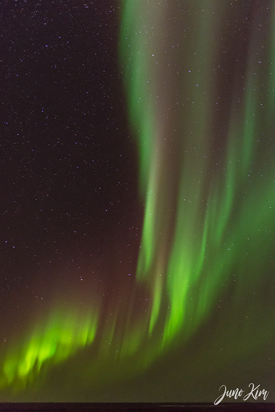 Utqiagvik Northern Lights-6103722-Juno Kim.jpg
