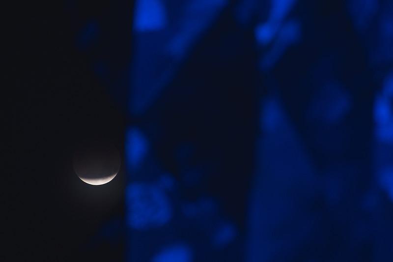 2018_0131-Moon-8042.jpg