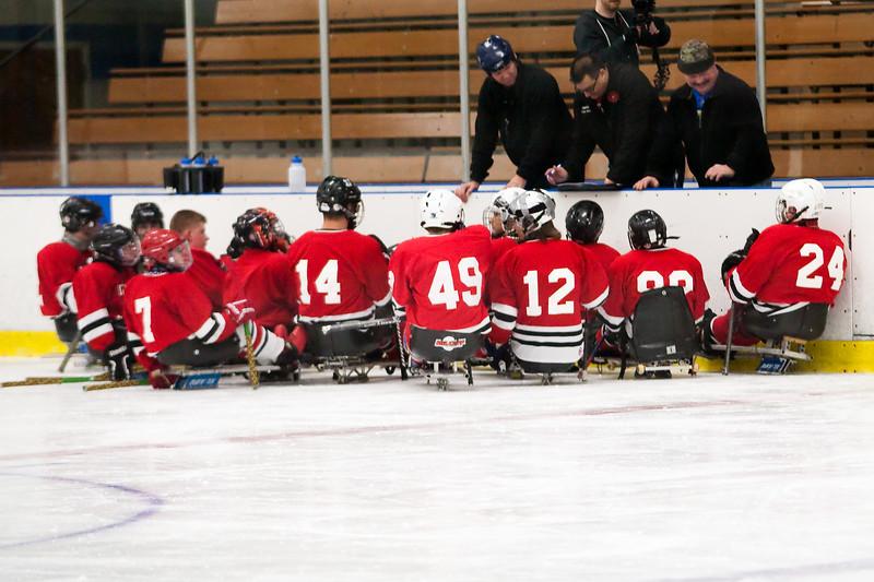 hockey_sled_011014_20.jpg