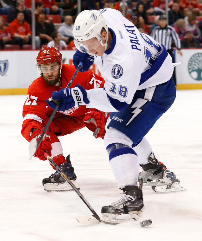 . Detroit Red Wings defenseman Kyle Quincey (27) pokes the puck from Tampa Bay Lightning left wing Ondrej Palat (18) during the first period of an NHL hockey game in Detroit Saturday, March 28, 2015. (AP Photo/Paul Sancya)