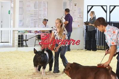 2021 Jackson County Fair - Pig Show