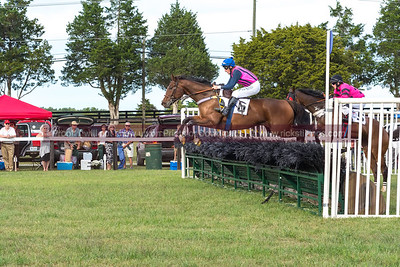 Foxfield Races Family Day 2104