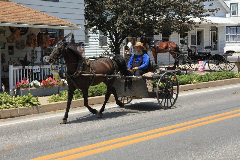 Amish country, PA 6405.jpg