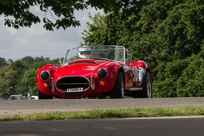 Motorsport at the Palace 2014