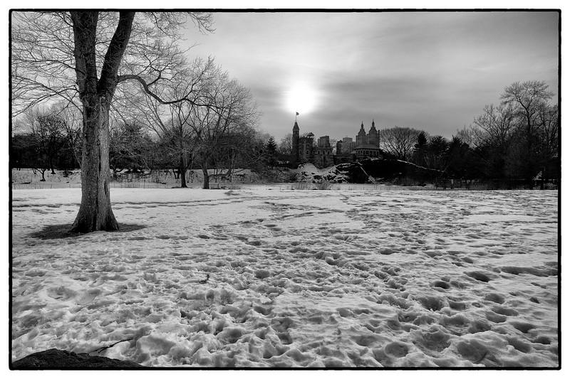 New York Feb 2011-13-February - 0748.jpg