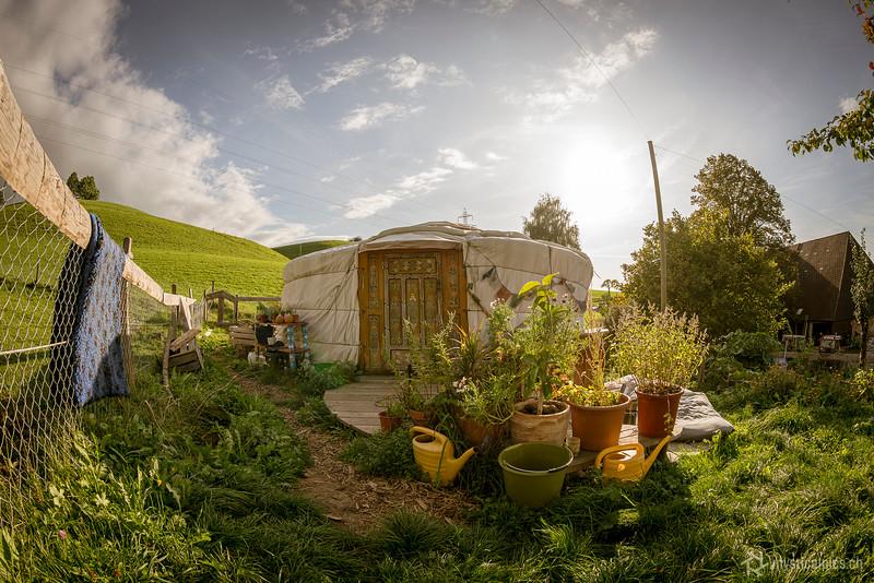 komposttage2019_107.jpg